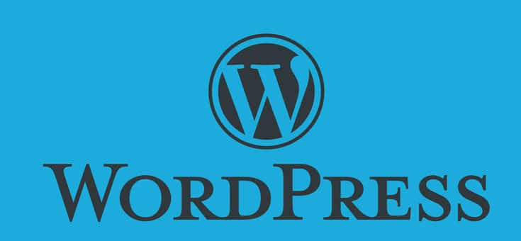 Why Should You Choose Wordpress For Your Small Business Website Zinger Web Design